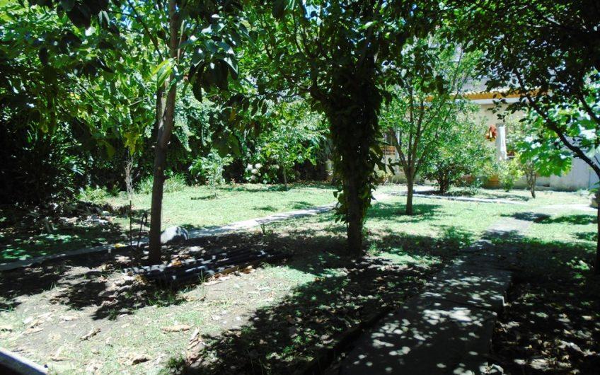 CASA CON GRAN PARQUE – TOTALMENTE AMUEBLADA       –       ALQUILADA